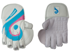 Blueroom Wicket Keeper Gloves